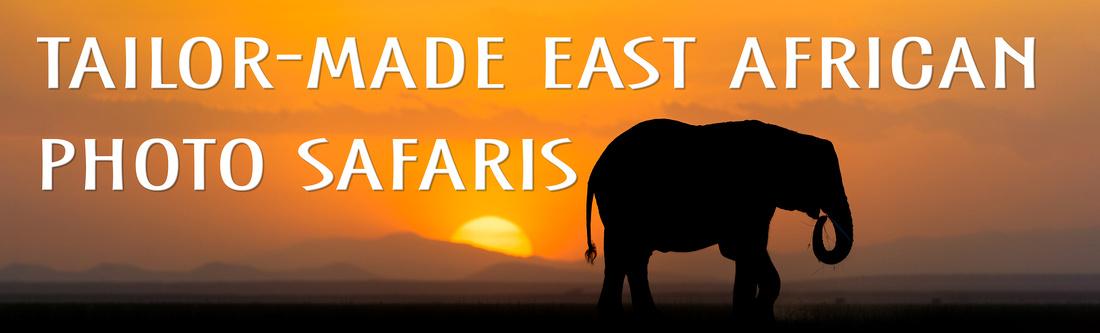 safari africa photo custom travel tailor